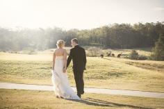 wedding-2382399_960_720